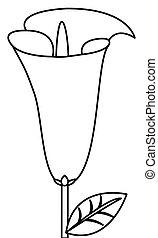 calla lilly flower icon - simple black line calla lilly...