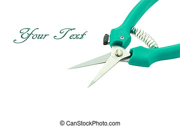 Garden Shears - Garden shears isolated on white with room...