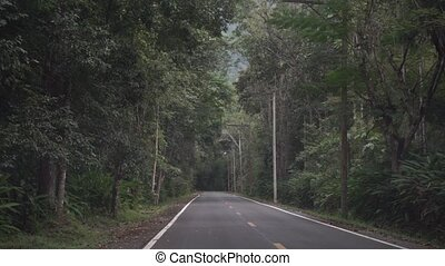 Empty Thai rural jungle road. First person view clip