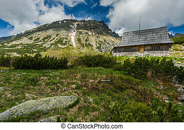 Wooden house in remote mountains in summer