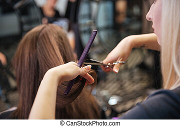 Beautiful hairdresser doing hairstyle to her client in...