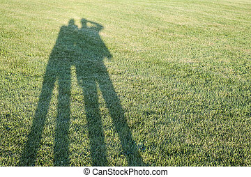 Shadows on grass