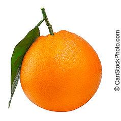 Citrus fruit orange isolated on white