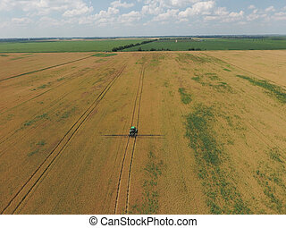 Adding herbicide tractor on the field of ripe wheat. View...