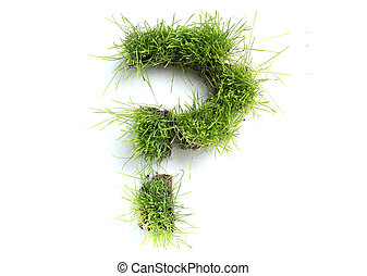 Symbols made of grass - question mark