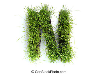 Letters made of grass - N
