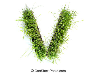 Letters made of grass - V