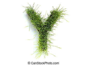 Letters made of grass - Y