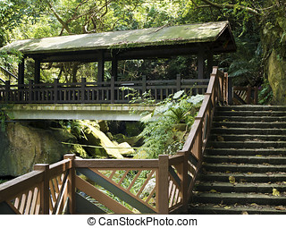 wooden pavilion in forest