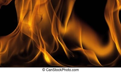 Burning Fire Flames Full Screen - 4k Igniting Fire Isolated...