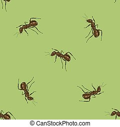 Seamless Animal Pattern. Ant Isolated on Green Background.