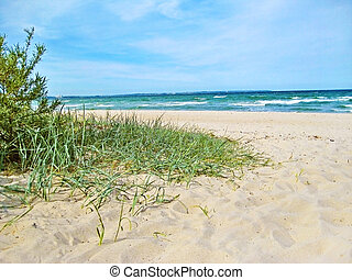 baltic sea beach access - beach access - path through dunes...