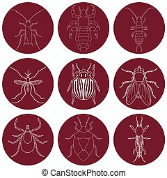 insect icons set Earwig and tick, stink bug and cricket, fly...
