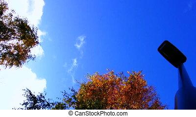 autumn scene 03