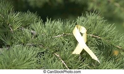 Yellow awareness ribbon ribbon on pine tree branch -...