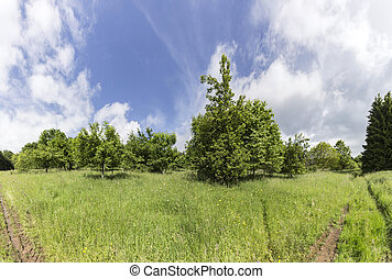 rural Eifel landscape with cloudy sky and wet meadow