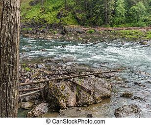 Snoqualmie River Shoreline 3 - Rocks line the shore on the...