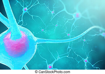 Neurons in the brain on blue background 3d illustration -...