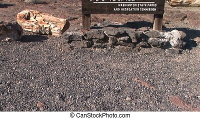 Warning Sign at Petrified Forest - Ginkgo Petrified Forest...