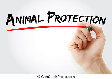 Hand writing Animal Protection