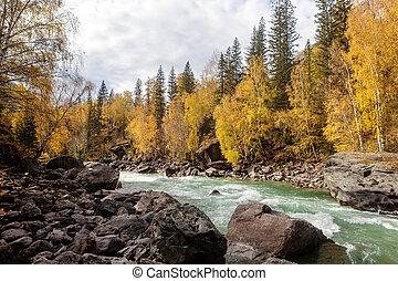 rapid river in autumn