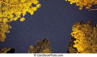 Night Sky, Time Lapse