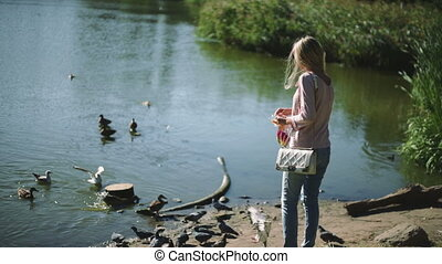 A woman feeds a birds in the Park bread