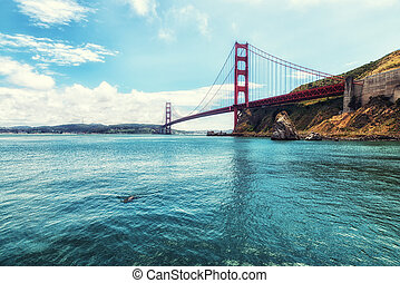 Golden Gate Bridge with Sea Lion - Golden Gate Bridge in San...