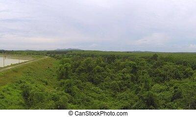 Thai jungle aerial video clip