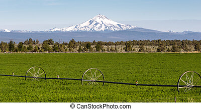 Mount Jefferson Stands Majestic Oregon Cascade Mountain...