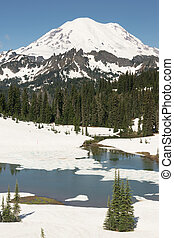 Tipsoo Lake Naches Peak Loop Mt Rainier Cascade Mountain...