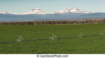 Oregon Cascade Mountain Range - Farm irrigation tools stand...