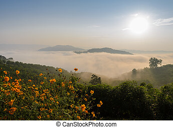 Sunrise with sea of fog above Mekong river in Thailand -...