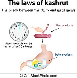 The laws of kosher The break between the dairy and meat...