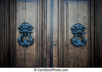 antique door background for your design