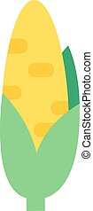 Corn cobs vector illustration.