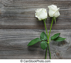 Two white roses on a wooden background - Two elegant white...