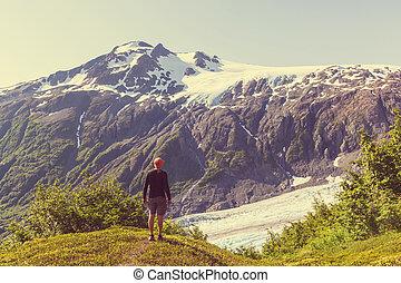Exit glacier - Exit Glacier, Kenai Fjords National Park,...