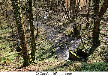 Small stream Soultzbach near Langensoultzbach, Vosges,...