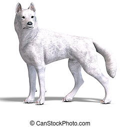 White Wolf 3D rendering with clipping path and shadow over...