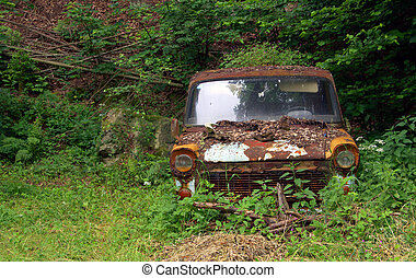 car wreck in nature
