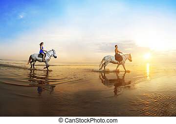 Love background Family and horse in the sunshine Couple in...