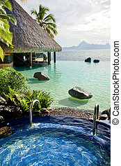 Jacuzzi and infinity pool over tropical ocean - Large...