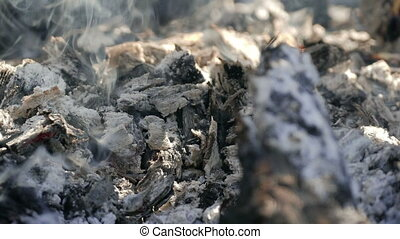 cooking food meat on picnic barbecue fire - meat food...