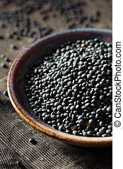 Raw Organic Black Lentils in a Bowl