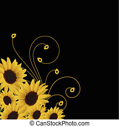 sunflowers border with swirls isolated on black background