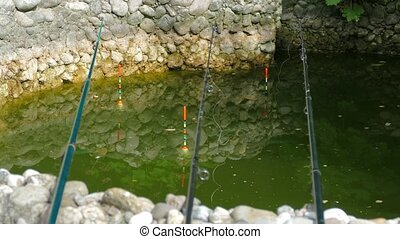 Three Rods In Green Pond - Three rods with colorful long...
