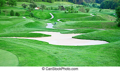 Golf course - Green grass of the golf course