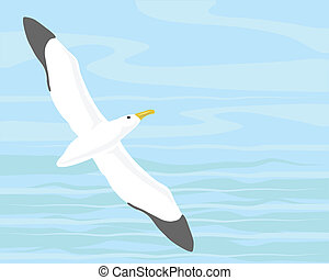 wandering albatross - vector illustration of a wandering...