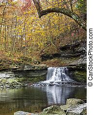 McCormicks Creek Falls in Autumn - The waterfall of...
